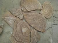 Камень пластушка песчаник Шкура тигра
