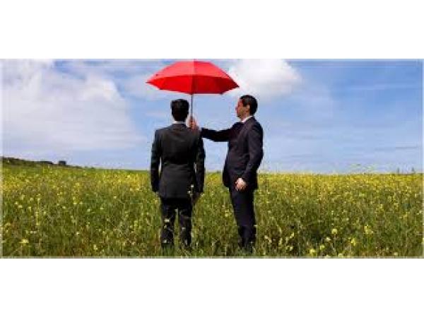 Бухгалтерская помощь при покупке или продаже ООО