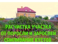 Расчистка Воронеж, расчистка участков в Воронеже
