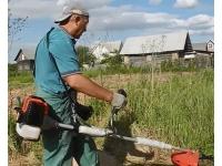 Покос травы Воронеж, косить траву в Воронеже