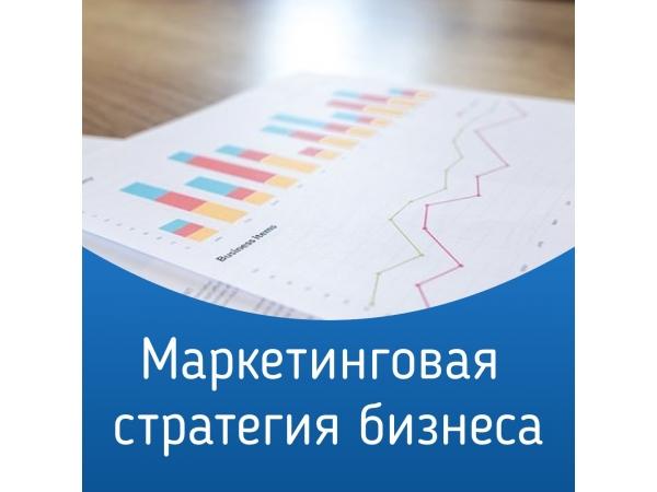 Маркетинговая стратегия бизнеса