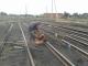 Куплю рельсы железнодорожные, жд путь под разборку