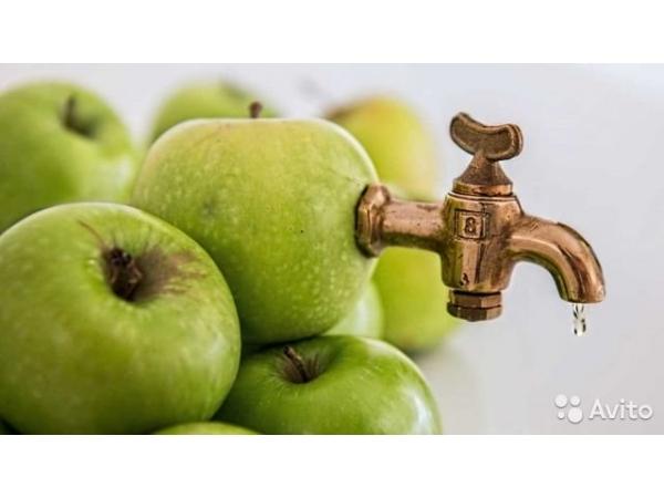 Линия изготовления яблочного сока прямого отжима
