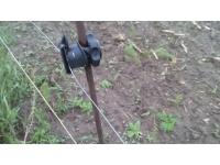 Проволока оцинкованная для электропастуха  от 1 метра!