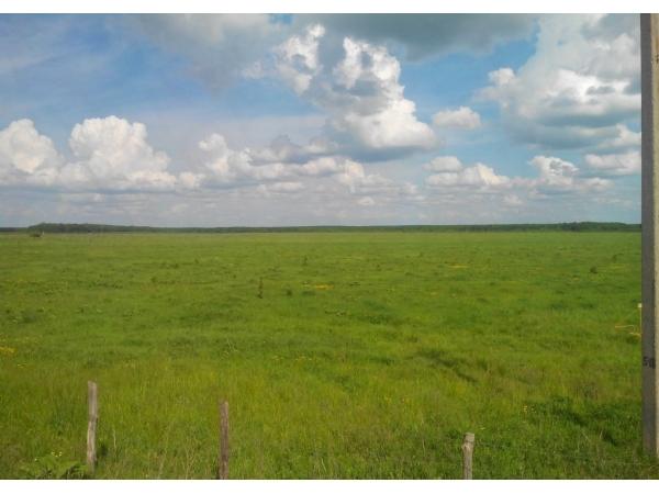 Земельный участок сельхозназначения 630 Га