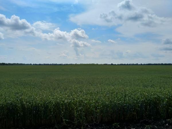 Земельный участок сельхозназначения 180 Га