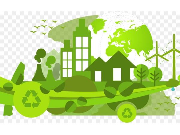 Сопровождение и организация работы по экологии. Аутсорсинг по экологии