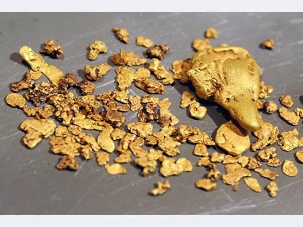 Polymetal консолидировала золоторудное месторождение Нежданинское